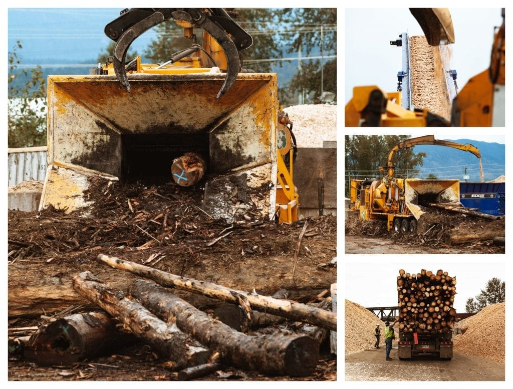 Valiant Log Sort Wood Recycling